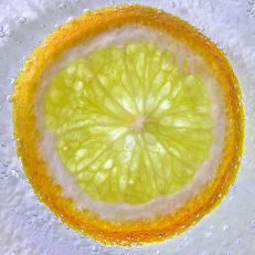 Slice of lemon